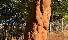 São Roque de Minas - São Roque de Minas-MG-Cupim gigante-Foto:Celso Ortolan