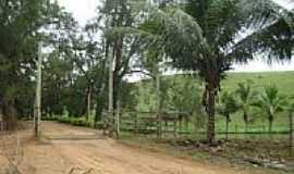 São Sebastião da Barra - Estrada na Fazenda José Marque no Distrito de São Sebastião da Barra-Foto:Gustavo Sturzenecker…