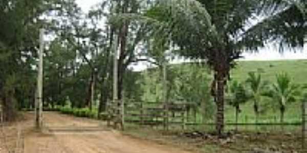 Estrada na Fazenda José Marque no Distrito de São Sebastião da Barra-Foto:Gustavo Sturzenecker…