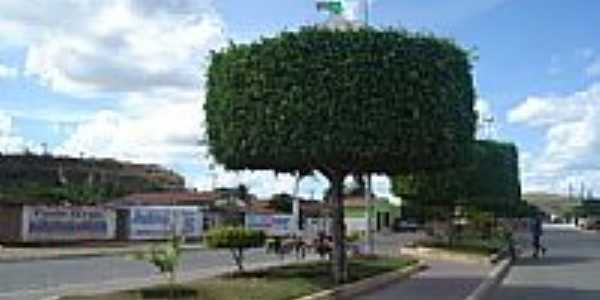 Avenida central em Banzaê-BA-Foto:Gláucio Almeida