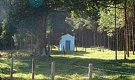 S�o Tom�s de Aquino - S�o Tom�s de Aquino-MG-Capelinha em �rea rural-Foto:Alexandre Bonacini