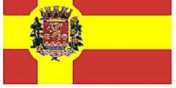 Bandeira de Senador Amaral-MG