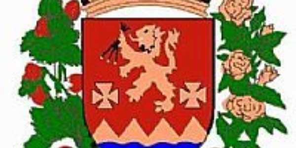 Brasão de Senador Amaral - MG
