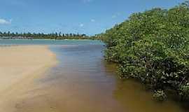 Barra do Jacuípe - Barra do Jacuipe-BA-Manguezal-Foto:Peterson Cunha
