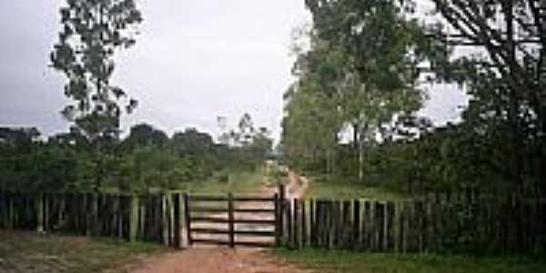 Serra das Araras por Ismacayo