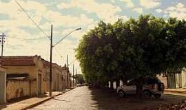 Tupaciguara - Tupaciguara-MG-Avenida arborizada-Foto:Igor Resende Martins
