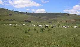 Valão - Valão-MG-Área rural-Foto:Salvino Olegario
