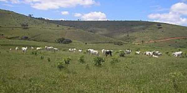 Valão-MG-Área rural-Foto:Salvino Olegario
