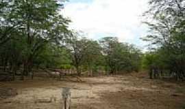 Barro Vermelho - Área rural de Barro Vermelho-BA-Foto:Ewerton Matos