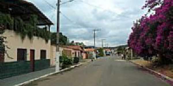 Rua da Grama em Vargem Linda-Foto:zedavargem@hotmail.c...