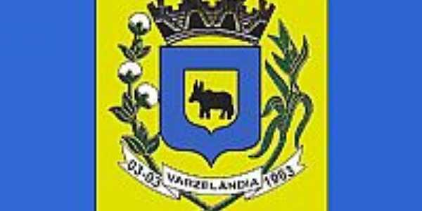 Bandeira  de Varzelâandia-MG