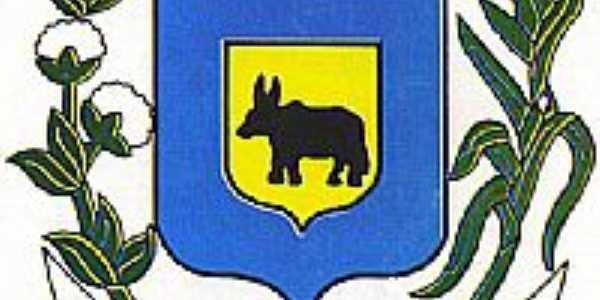 Brasão Varzelândia-MG