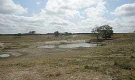 Barrocas - Barrocas-BA-Lagoa na Fazenda Cipó-Foto:Aquilino Silva