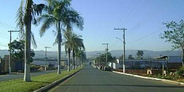 Vazante-MG-Avenida na entrada da cidade-Foto:JOSE EYMARD