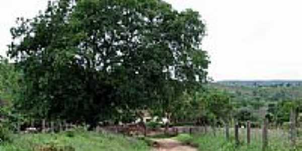 Área rural-Foto:D. Andrade