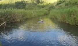 Batinga - Batinga-BA-Rio Umburana-Foto:Adelson Ferrer