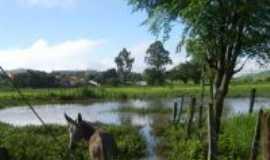 Batinga - vázea do rio Umburana, Por Adelson Ferrer