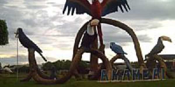 Trevo das araras em Amambaí-Foto:Ullmann