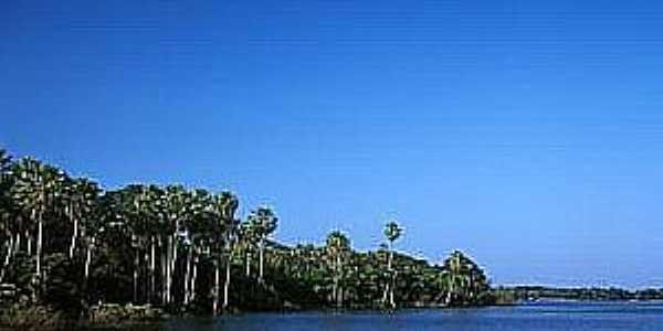 Amolar-MS-Lagoa Guaíba-Foto:www.naturezabrasileira.