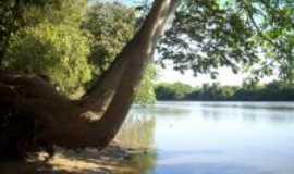 Angélica - rio ivinhema, Por SERGIO TARDIOLLI