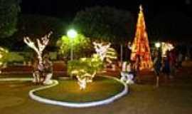 Arapuã - Decoração Natalina-Foto:Claudinei