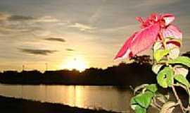Campo Grande - Flor e nascer do Sol no Parque das Nações Indígenas em Campo Grande-MS-Foto:Paulo Yuji Takarada