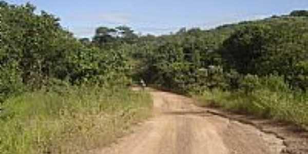 Trilha de ciclismo em Cipolândia-MS-Foto:www.pedal.com.br