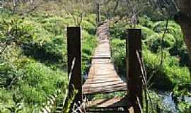Jateí - Ponte para Trilha Ecológica em Jateí-Foto:Antonio B. de Souza