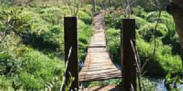 Ponte para Trilha Ecológica em Jateí-Foto:Antonio B. de Souza