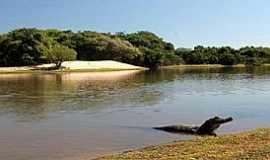 Nhecolândia - Nhecolândia-MS-Pantanal de Nhecolândia-Foto:NEWS DE RV
