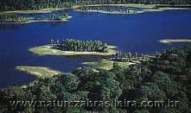 Nhecolândia - Nhecolândia-MS-Rio no Pantanal-Foto:Zig Koch