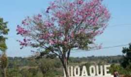 Nioaque - Entrada da cidade-Foto:Elizete Maidana