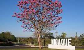 Nioaque - Trevo de acesso