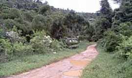 Boa Nova - Área rural em Boa Nova-Foto:home.tiscali.