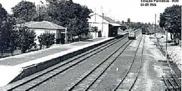 Palmeiras-MS-Estação Ferroviária em 1976-Foto:J. H. Bellorio