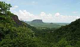 Piraputanga - Foto: piraputanga.com