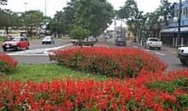 Ponta Por� - Rotat�ria da Av.Marechal Floriano-Foto:Paulo Yuji Takarada