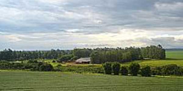 Vista da região