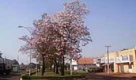 Sidrolândia - Avenida em Sidrolândia-Foto:Valmor Luiz Adona
