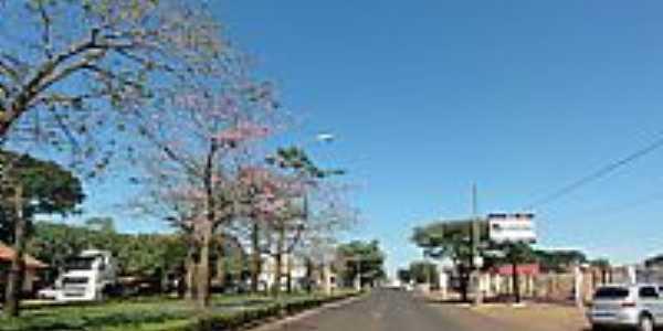 Sidrolândia-MS-Avenida Dorvalino dos Santos-Foto:Paulo Yuji Takarada