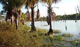 Alto Boa Vista - Lago em Alto Boa Vista-Foto:Hélcio B. Silva