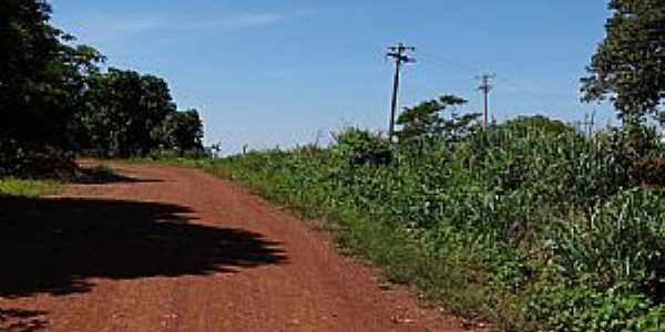 Entre Rios-MT-Estrada de terra-Foto:Leandro Luciano