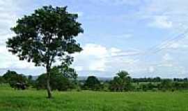 Figueirópolis D