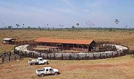 Juara - Juara-MT-Fazenda na Capital do Gado-Foto:Juaranet