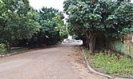 Nova Olímpia - Rua arborizada de Nova Olímpia-MT-Foto:Edson Walter Cavalar…