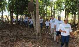 Nova Ubiratã - 2ª Caminhada na Natureza, Por CLEONICE GOMES DA SILVA MAYNART