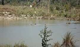 Paranaíta - Paranaíta-MT-Área pós-garimpo de ouro em pequeno afluente do Rio Teles Pires-Foto:medh