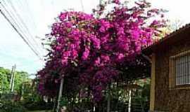 Primavera do Leste -