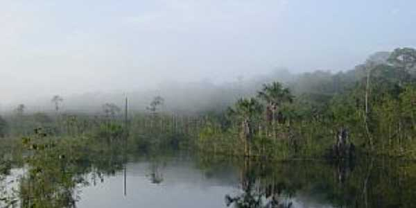 Querência-MT-Rio Darro próximo à nascente-Foto:xyko