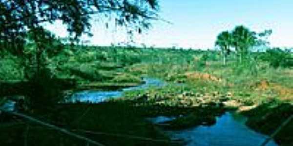 Fazenda Tamanduá-Foto:Cavalar Walter Edson ...